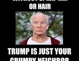 Old Internet Memes - meme submission old man trump survivingtrump45