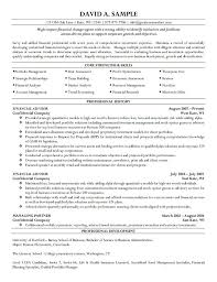 cfo resume examples resume writer for cfos executive resume