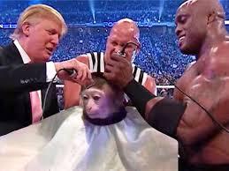 Monkey Meme - monkey haircut meme can be photoshopped into anything insider