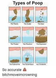 Meme Types - types of poop the titanic the snake the deer the floater the phantom