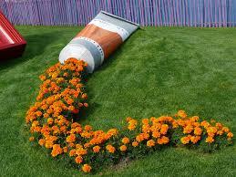 Orange Paint by A Tube Of Orange Paint Leaks Marigolds In A Public Park In France