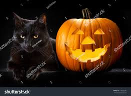 Free Printable Scary Halloween Pumpkin Stencils by Pumpkin Horror Cat