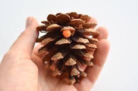 pom poms and pinecones ornaments