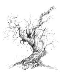 10 beautiful tree drawings for inspiration drawing trees
