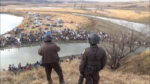 nodapl protesters taunt police with dead pig during thanksgiving nodapl protesters taunt police with dead pig during thanksgiving protests say anything