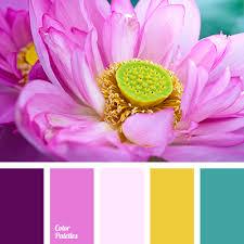 Pink Color Scheme Pale Pink Color Palette Ideas