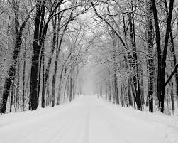 winter nature wallpapers snowy road wallpaper winter nature wallpapers in jpg format for