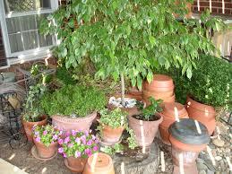 exterior design interesting weston nurseries for your garden design