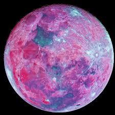 Pink Moon April Zenoflemuria Under A Pink Moon Youtube