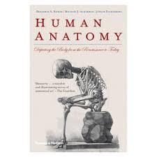 Anatomy Pancreas Human Body Human Anatomy Renaissance Choice Image Learn Human Anatomy Image