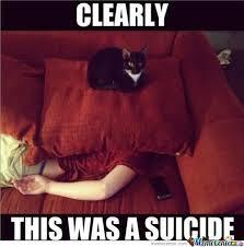 Murder Meme - murder cat by rakelo meme center