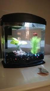 Aqueon Led Light Aqueon Minibow Blue Led Desktop Fish Aquarium Kit Petco