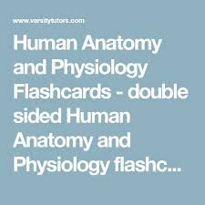 Anatomy And Physiology Tests With Answers Best 25 Human Anatomy And Physiology Ideas On Pinterest