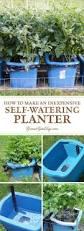 best 25 self watering pots ideas on pinterest grow boxes water