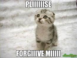 Sad Memes About Love - pliiiiiise forgiiive miiiii meme sad cat 4937 memeshappen