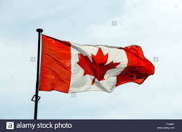 Candaian Flag Canadian Flag On The Blue Sky Background Stock Photo Royalty Free