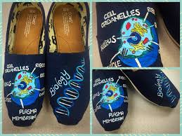 toms periodic table shoes custom made biology toms designed and personalized just for