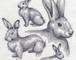 rabbit sketch etsy