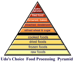 food pyramid illustrates rise in toxicity with food processing