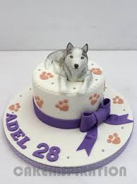 3d cake customized children collection pet grey siberian husky 3d cake