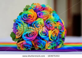 multicolored roses bouquet multicolored roses rainbow stock photo 183675353