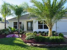 Front House Landscaping by Marvelous Front Yard Landscaping Ideas With Palm Trees Photo