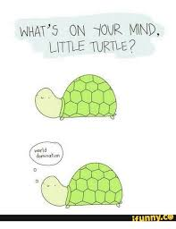 Funny Turtle Memes - what s on tour mnd little turtle world domination funny little