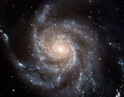 what is the differnece between a spiral and regular perm spiral galaxy wikipedia