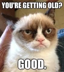 Grumpy Cat Meme Good - youre getting old good cats grumpy cat pinterest grumpy