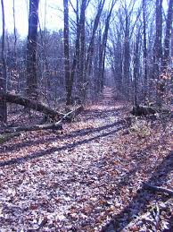quail hollow state park stark county hiking trail pictures