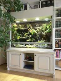 terrariums gorgeous very functional this with a removable