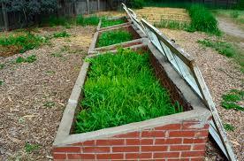 zone 5 fall gardening u2013 tips on fall planting for zone 5 gardens