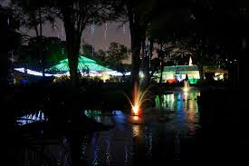 Zoo Light Dc by San Antonio Zoo Lights A New Holiday Tradition Family Love In