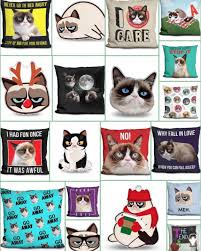 Grumpy Cat Meme I Had Fun Once - grumpy cat wins 710 000 in copyright lawsuit get leashed magazine