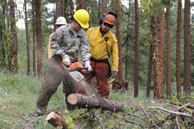 Wildfire Equipment Operators by More Than 400 Firefighters To Train For Coming Wildfire Season At