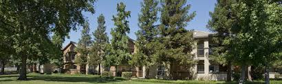 Villa Risa Apartments Chico Ca by Apartment Creative Pine Tree Apartments Chico Ca Room Ideas