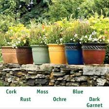 growing vegetable gardens containers