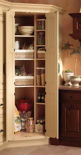 Corner Kitchen Storage Cabinet by 74 Best Storage Accessories Images On Pinterest Kitchen