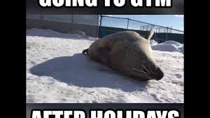 going to after holidays