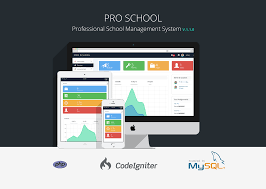 pro php management system by patchesoft codecanyon