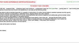 typist resume braille typist cv work experience resume objective