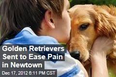 Comfort Retrievers Golden Retriever U2013 News Stories About Golden Retriever Page 1