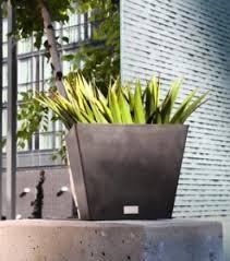 allplanters com flower planters u0026 containers for gardeners