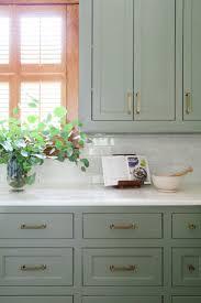 green kitchen units home design ideas