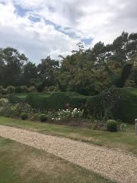 hedge cutting gsh tree surgery
