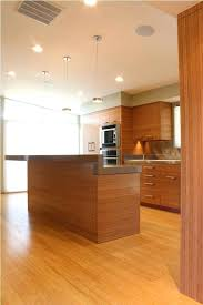 bamboo kitchen cabinets cost bamboo kitchen cabinets bamboo kitchen cabinets for sale