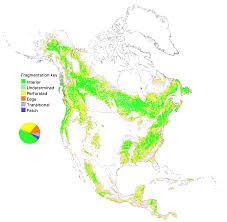 North America Biome Map by Conservation Ecology Global Scale Patterns Of Forest Fragmentation