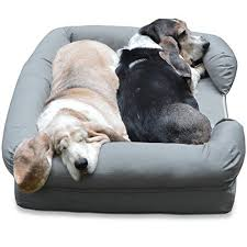dog nesting bed the very best dog beds for large dogs rover com