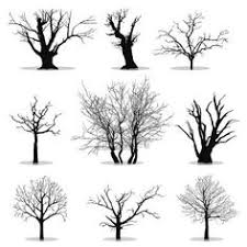 tree drawings black and white sillouette tree silhouette