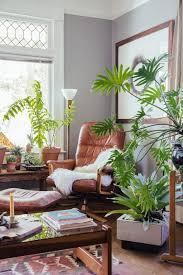 Homebase Decorating Interior Living Room Plants Pictures Living Room Plants Online